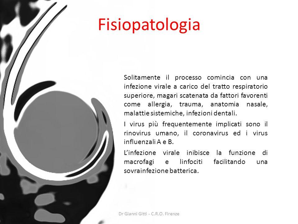 Fisiopatologia Solitamente il processo comincia con una infezione virale a carico del tratto respiratorio superiore, magari scatenata da fattori favor