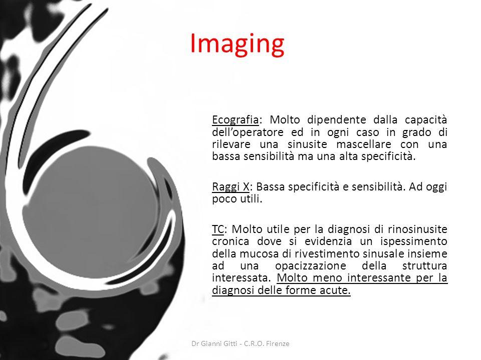 Imaging Ecografia: Molto dipendente dalla capacità delloperatore ed in ogni caso in grado di rilevare una sinusite mascellare con una bassa sensibilit