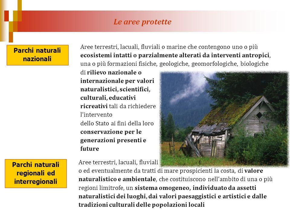 Parchi naturali nazionali Parchi naturali regionali ed interregionali Aree terrestri, lacuali, fluviali o marine che contengono uno o più ecosistemi i