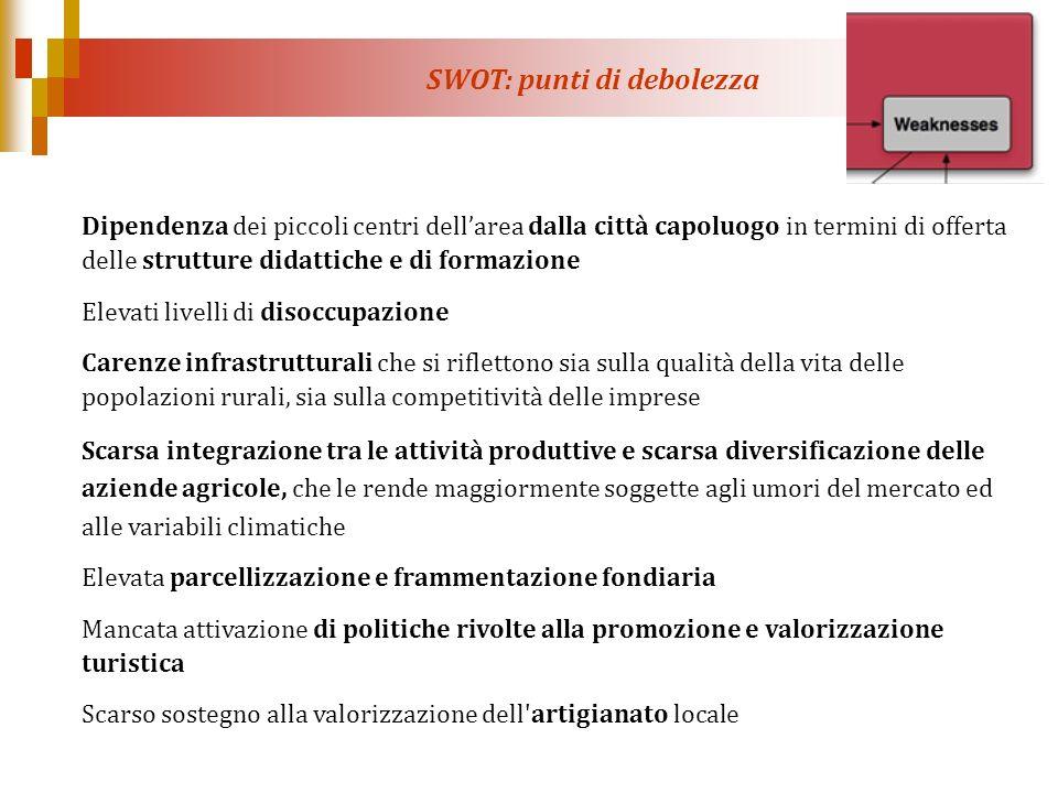 SWOT: punti di debolezza Dipendenza dei piccoli centri dellarea dalla città capoluogo in termini di offerta delle strutture didattiche e di formazione