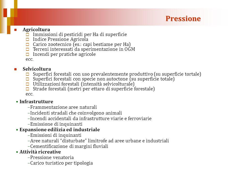 Agricoltura Immissioni di pesticidi per Ha di superficie Indice Pressione Agricola Carico zootecnico (es.: capi bestiame per Ha) Terreni interessati d