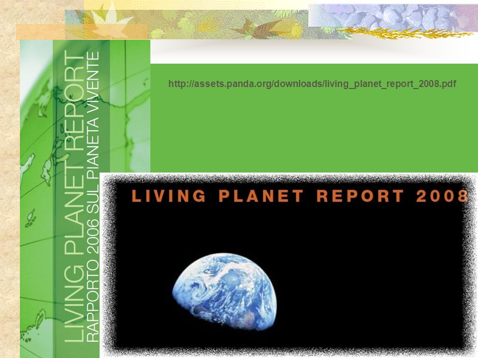 Come si calcola limpronta ecologica di un bene di consumo .