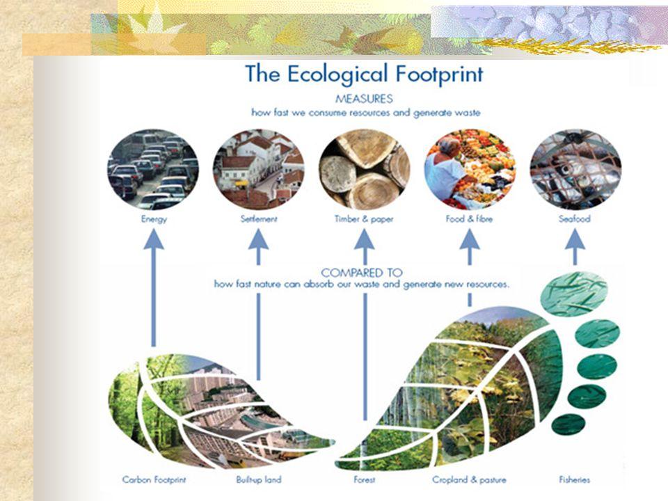 Popolazione (milioni) Impronta pro capite (ha) I Disponibilità di biocapacità (ha) B Deficit ecologico pro capite D = I-B USA 288,09,54,94,6 Australia 19,47,719,2-11,5 Brasile 174,02,210,2-7,8 Francia 59,65,83,12,7 Italia 57,53,81,12,7 Cina 1292,61,50.80,7 India 1033,40,80,4 Terra 6148,12,21,80,4 Le impronte al 2001 della popolazione mondiale e di alcuni Paesi ( Dati 2001 da Living Planet report 2004 del WWF)