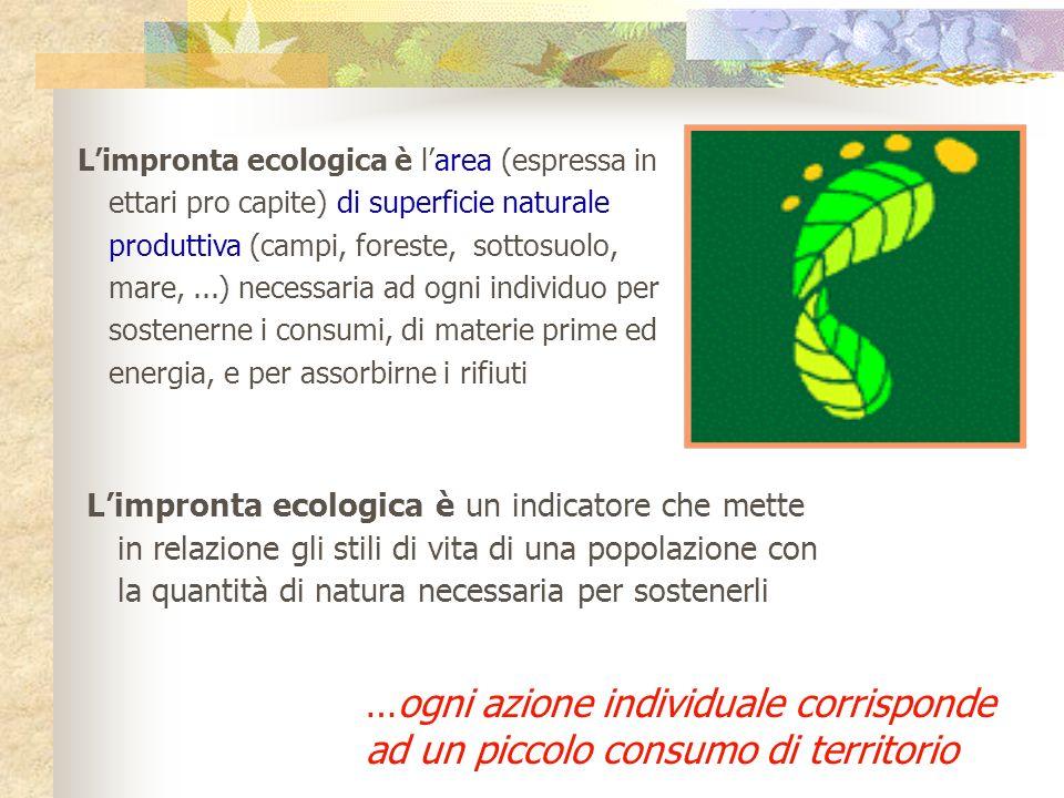 Il valore medio 2007 dellimpronta ecologica di UN ITALIANO 3,8 ha = 38000 mq 7,5 campi da calcio