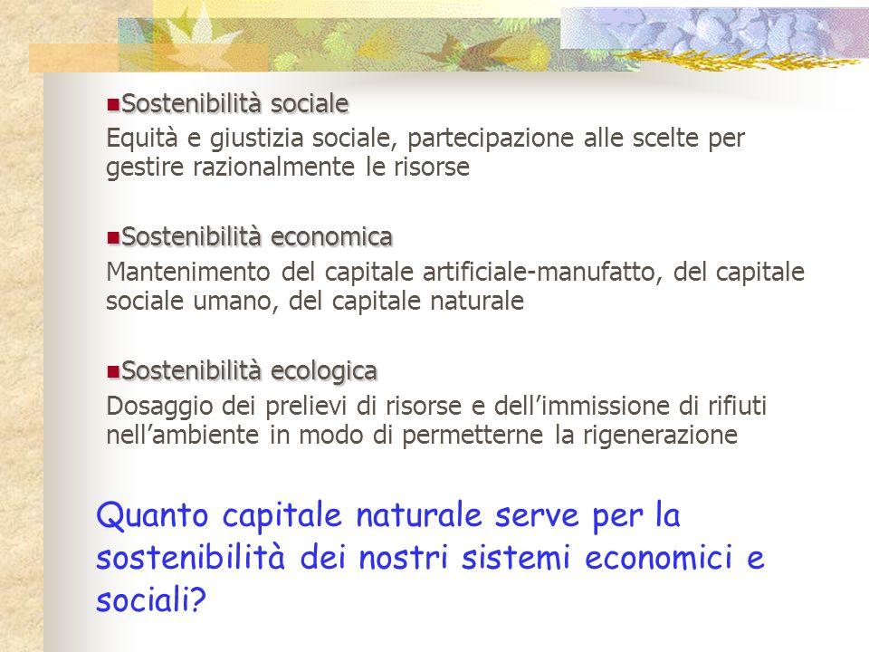 Quanto capitale naturale serve per la sostenibilità dei nostri sistemi economici e sociali? Sostenibilità sociale Sostenibilità sociale Equità e giust