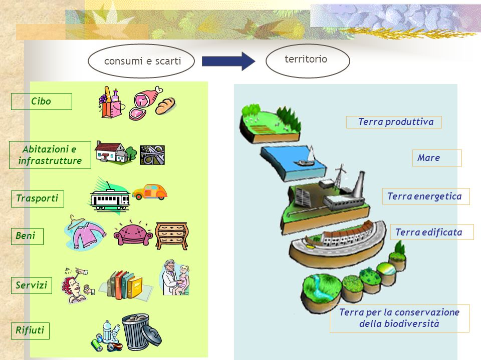 Terra produttiva Mare Terra energetica Terra edificata Terra per la conservazione della biodiversità Trasporti Consumi alimentari Abitazioni e infrastrutture Beni Rifiuti Servizi consumi e scarti territorio
