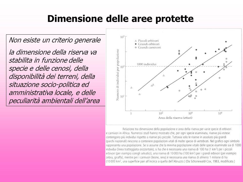 Dimensione delle aree protette Non esiste un criterio generale la dimensione della riserva va stabilita in funzione delle specie e delle cenosi, della