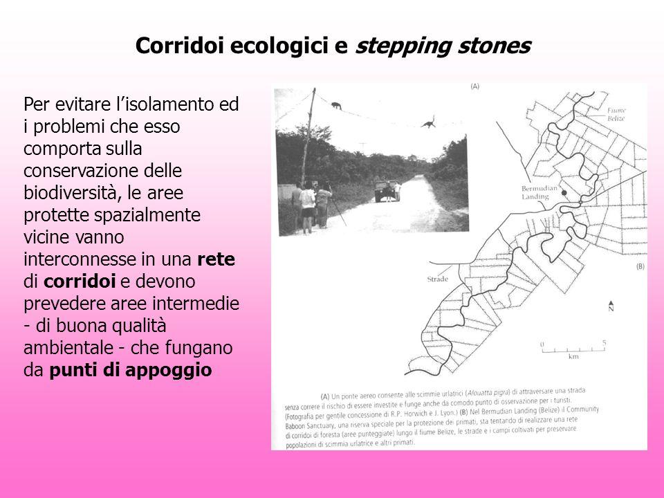Corridoi ecologici e stepping stones Per evitare lisolamento ed i problemi che esso comporta sulla conservazione delle biodiversità, le aree protette spazialmente vicine vanno interconnesse in una rete di corridoi e devono prevedere aree intermedie - di buona qualità ambientale - che fungano da punti di appoggio