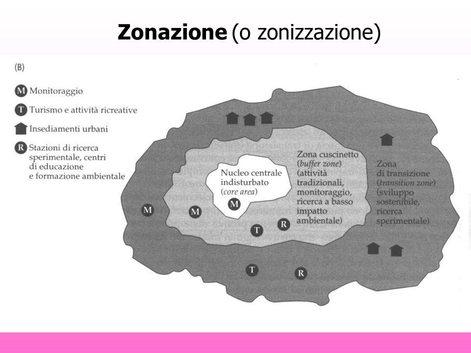 Zonazione (o zonizzazione)