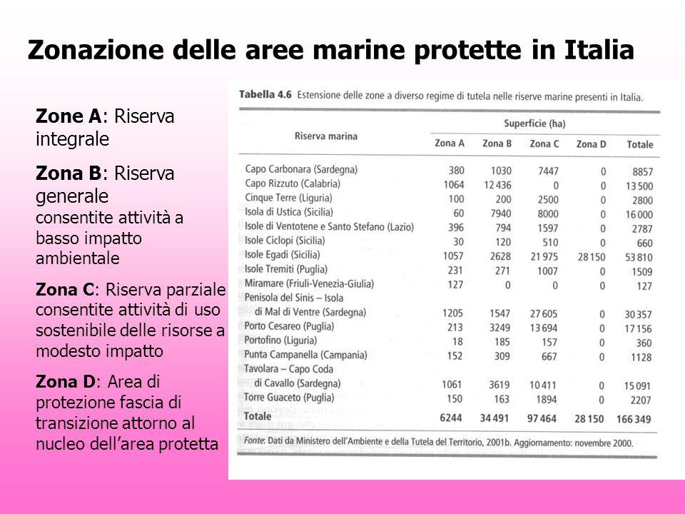 Zonazione delle aree marine protette in Italia Zone A: Riserva integrale Zona B: Riserva generale consentite attività a basso impatto ambientale Zona C: Riserva parziale consentite attività di uso sostenibile delle risorse a modesto impatto Zona D: Area di protezione fascia di transizione attorno al nucleo dellarea protetta