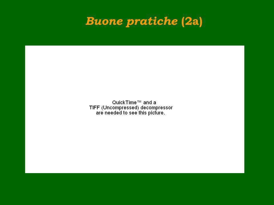 Buone pratiche (2a)