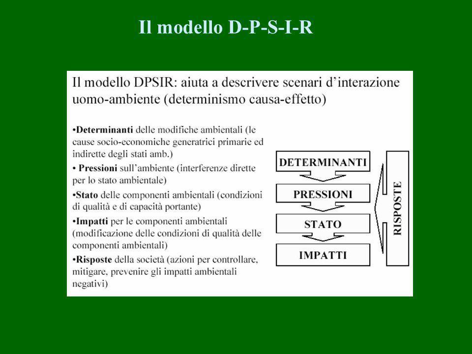 Il modello D-P-S-I-R