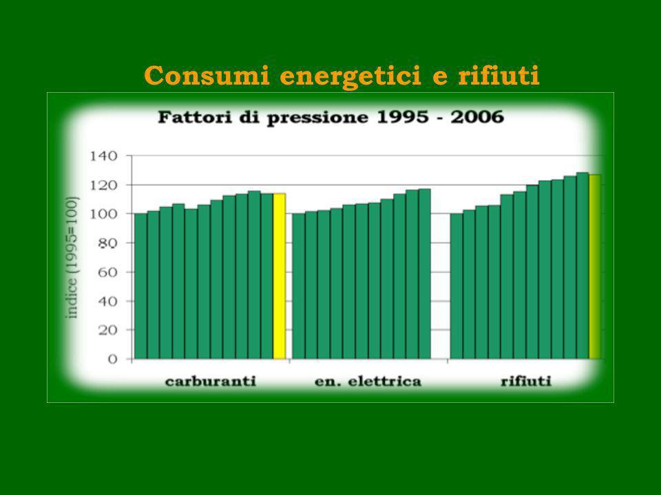 Esempio 1: catena di indicatori per lenergia DETERMINANTI DETERMINANTI: VALORI AGGIORNATI DEI FABBISOGNI NEI SETTORI CIVILI, PRIMARIO, SECONDARIO E TERZIARIO PRESSIONI: CONSUMO DI ENERGIA EMISSIONI SERRA STATO: CONCENTRAZIONE DI CO 2 TEMPERATURA MEDIA IMPATTI: EFFETTO SERRA, EUSTATISMO (variazione del livello dei mari causata da aumento di volume delle acque) RISPOSTE: CONSUMI ENERGETICI DA FONTI RINNOVABILI EFFICIENZA E RISPARMIO ENERGETICO