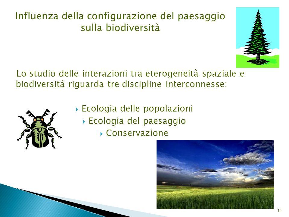 Lo studio delle interazioni tra eterogeneità spaziale e biodiversità riguarda tre discipline interconnesse: Ecologia delle popolazioni Ecologia del pa