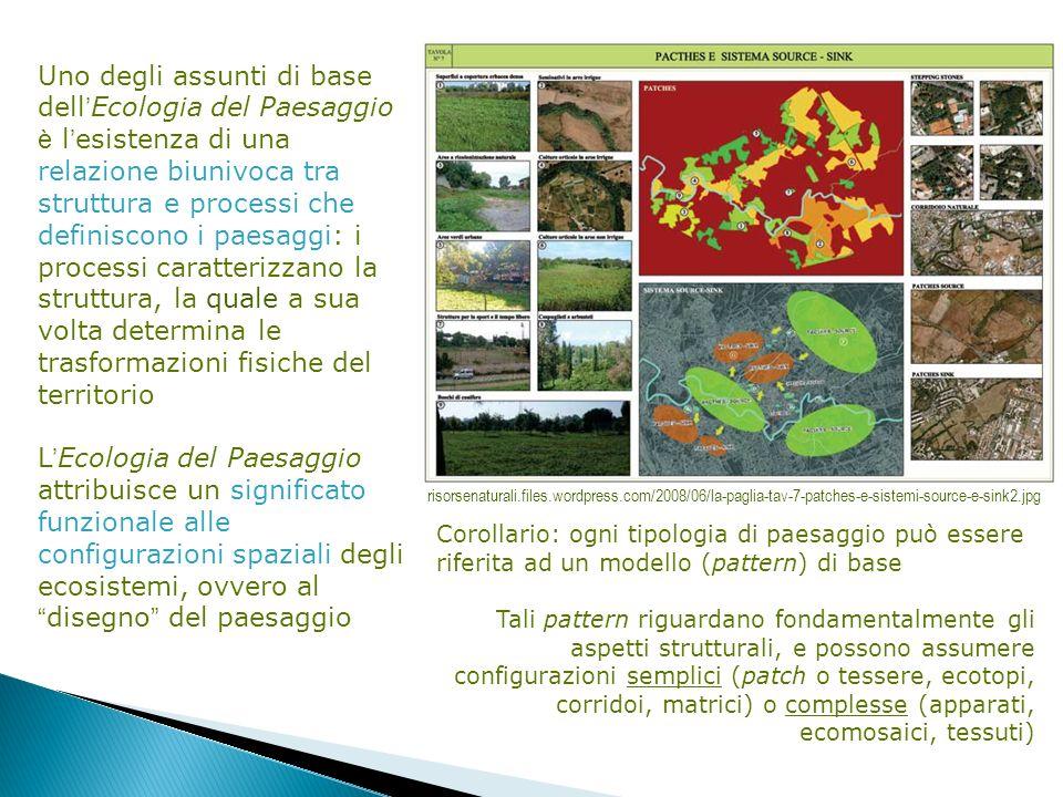 Uno degli assunti di base dell Ecologia del Paesaggio è l esistenza di una relazione biunivoca tra struttura e processi che definiscono i paesaggi: i
