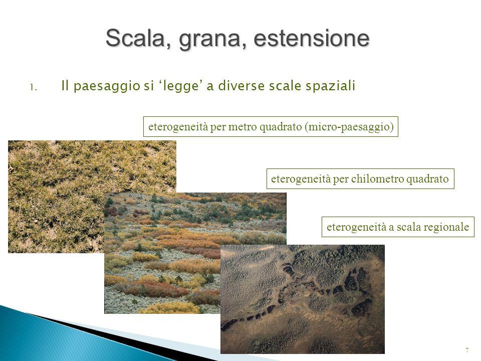 1. Il paesaggio si legge a diverse scale spaziali 7 eterogeneità per metro quadrato (micro-paesaggio) eterogeneità per chilometro quadrato eterogeneit