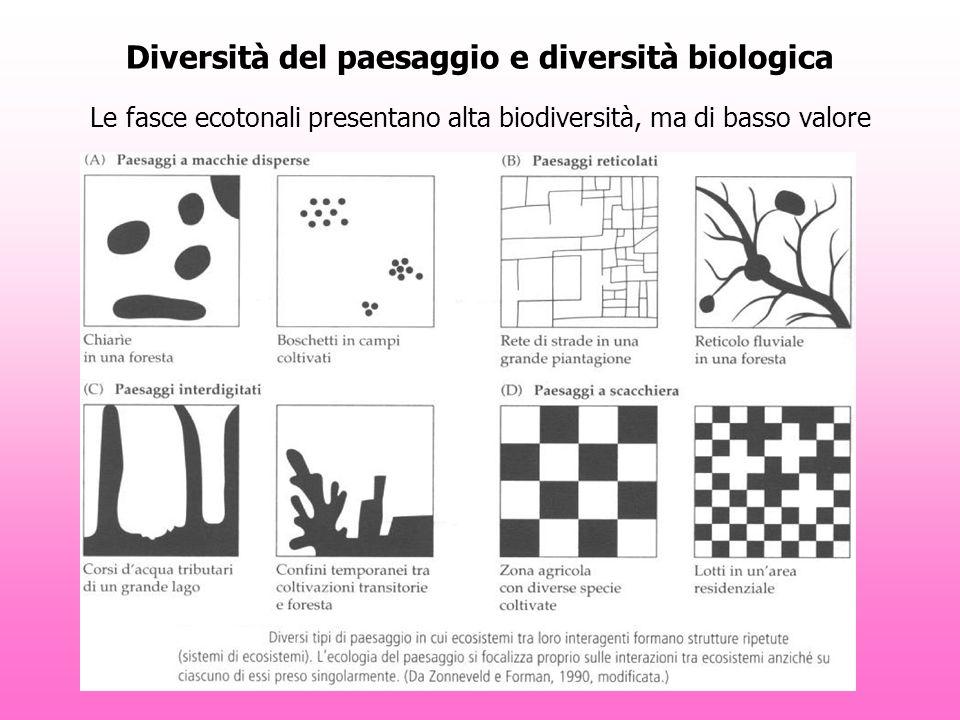 Diversità del paesaggio e diversità biologica Le fasce ecotonali presentano alta biodiversità, ma di basso valore
