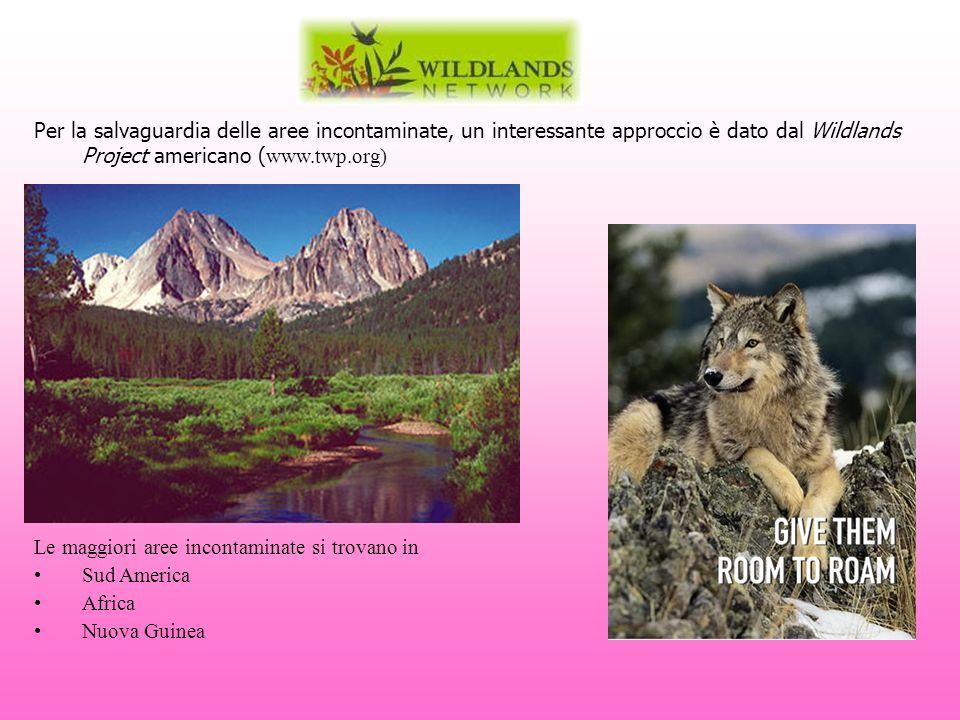 Per la salvaguardia delle aree incontaminate, un interessante approccio è dato dal Wildlands Project americano ( www.twp.org) Le maggiori aree inconta