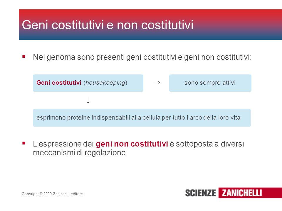 Copyright © 2009 Zanichelli editore Nel genoma sono presenti geni costitutivi e geni non costitutivi: Geni costitutivi e non costitutivi Geni costitut