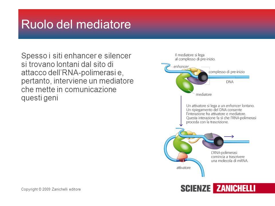 Copyright © 2009 Zanichelli editore Spesso i siti enhancer e silencer si trovano lontani dal sito di attacco dellRNA-polimerasi e, pertanto, intervien
