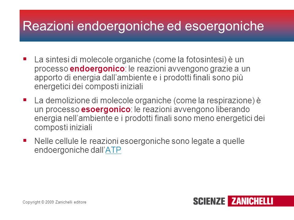 Copyright © 2009 Zanichelli editore La sintesi di molecole organiche (come la fotosintesi) è un processo endoergonico: le reazioni avvengono grazie a