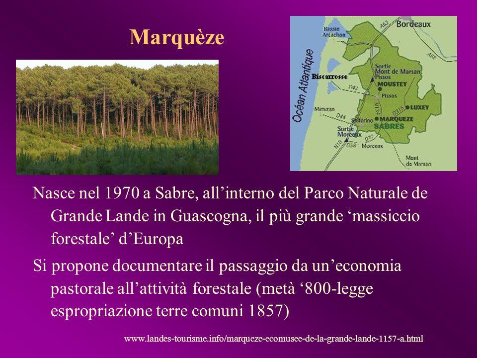 Nasce nel 1970 a Sabre, allinterno del Parco Naturale de Grande Lande in Guascogna, il più grande massiccio forestale dEuropa Si propone documentare i