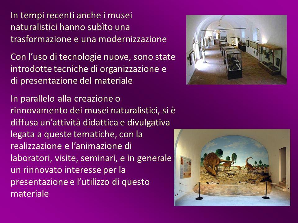 In tempi recenti anche i musei naturalistici hanno subìto una trasformazione e una modernizzazione Con luso di tecnologie nuove, sono state introdotte