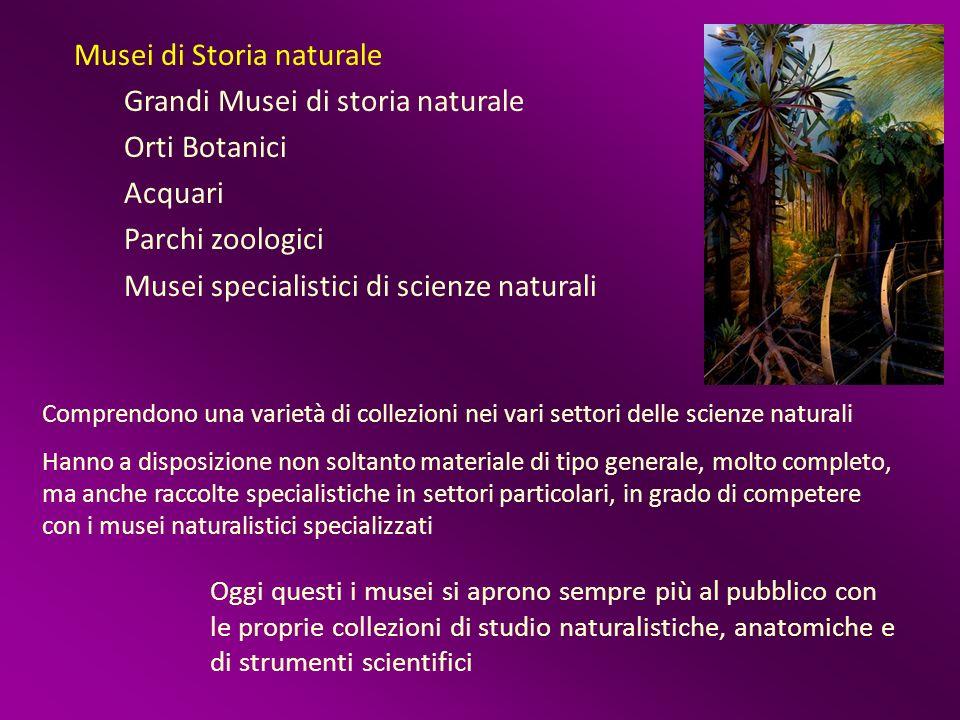 Musei di Storia naturale Grandi Musei di storia naturale Orti Botanici Acquari Parchi zoologici Musei specialistici di scienze naturali Comprendono un