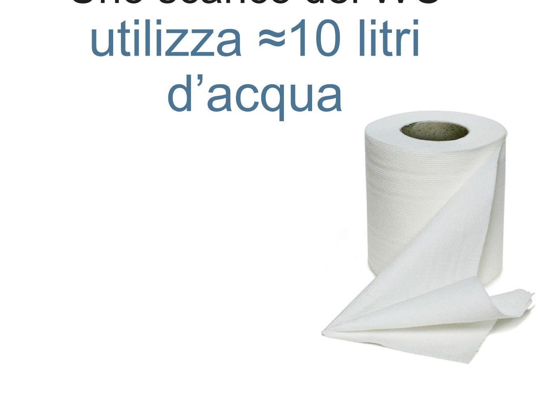 Uno scarico del WC utilizza 10 litri dacqua