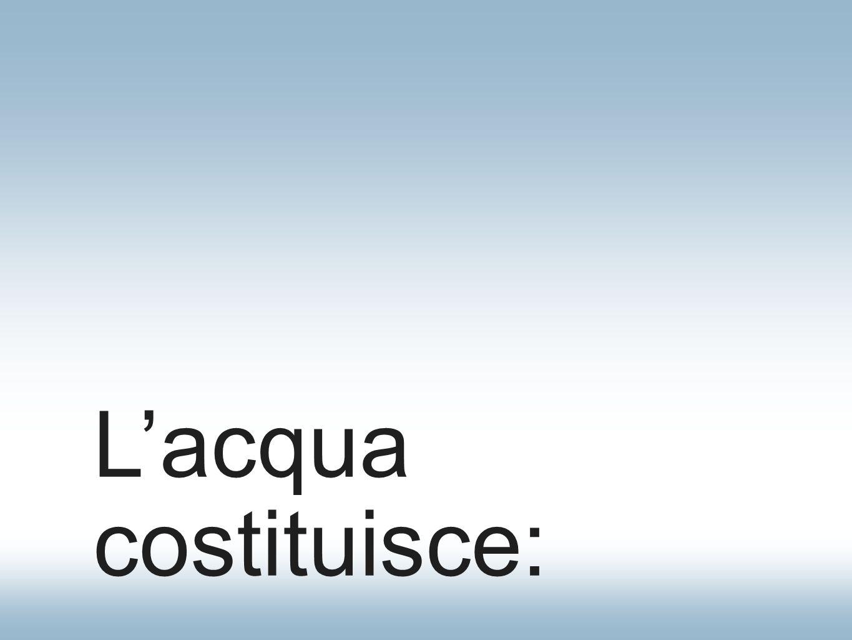 Lacqua costituisce: