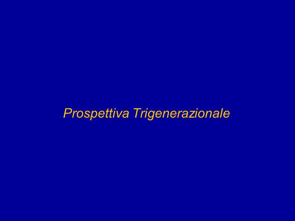 Prospettiva Trigenerazionale