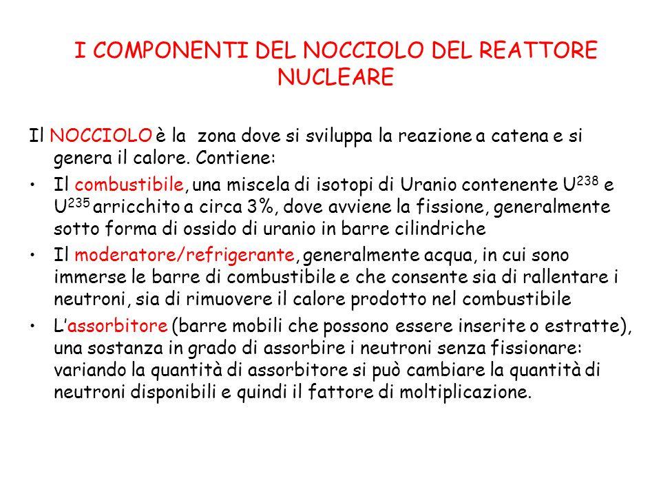 I COMPONENTI DEL NOCCIOLO DEL REATTORE NUCLEARE Il NOCCIOLO è la zona dove si sviluppa la reazione a catena e si genera il calore.