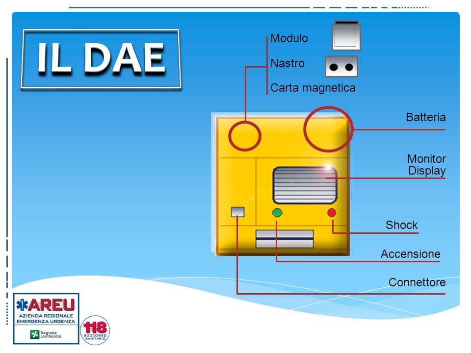 Monitor Display Modulo Nastro Carta magnetica Connettore Batteria Shock Accensione