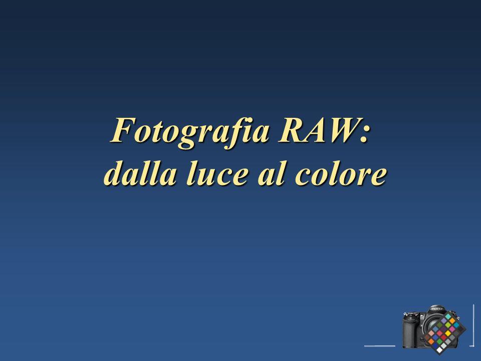 Fotografia RAW: dalla luce al colore
