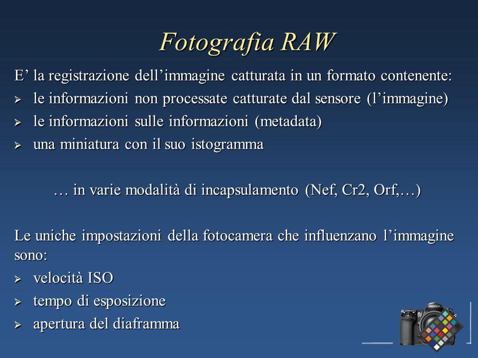 Fotografia RAW E la registrazione dellimmagine catturata in un formato contenente: le informazioni non processate catturate dal sensore (limmagine) le informazioni non processate catturate dal sensore (limmagine) le informazioni sulle informazioni (metadata) le informazioni sulle informazioni (metadata) una miniatura con il suo istogramma una miniatura con il suo istogramma … in varie modalità di incapsulamento (Nef, Cr2, Orf,…) Le uniche impostazioni della fotocamera che influenzano limmagine sono: velocità ISO velocità ISO tempo di esposizione tempo di esposizione apertura del diaframma apertura del diaframma
