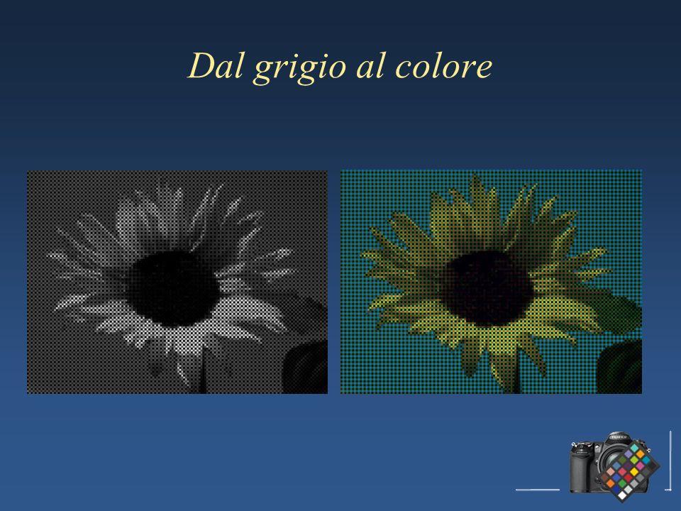 Dal grigio al colore