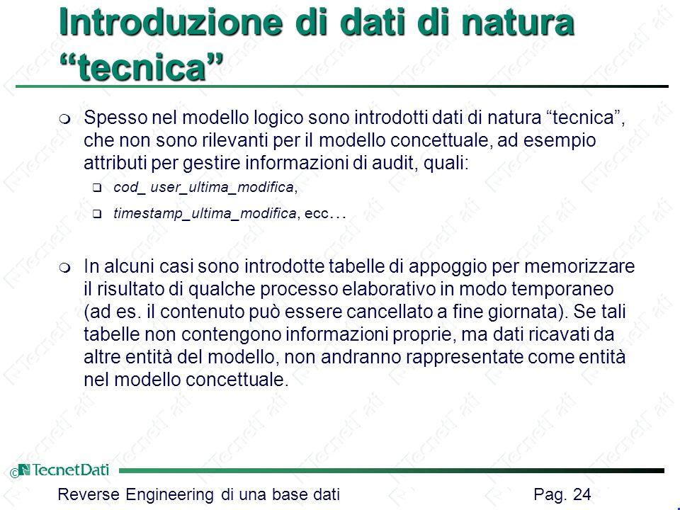Reverse Engineering di una base dati Pag. 24 © Introduzione di dati di natura tecnica m Spesso nel modello logico sono introdotti dati di natura tecni
