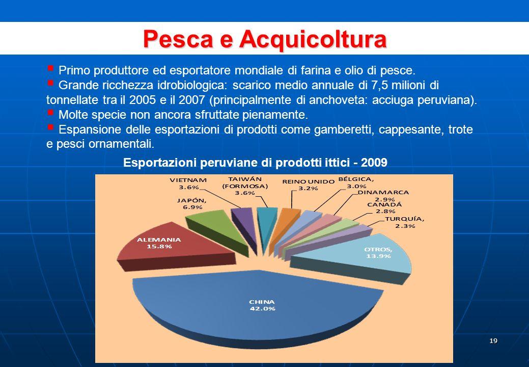 18 TARIFFA AD VALOREM + SOVRACCOSTI CODICE DOGANALE NUMERO PROPORZIONE (%) 03,977 53.9 9%2,609 35.4 17%79210,7 Totale7,378100,0 Tariffa doganale media 5,0 Deviazione standard della distribuzione tariffaria 5,8 Struttura delle tariffe doganali ridotte e con bassa dispersione Fonte: SUNAD.