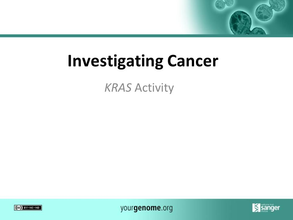 Investigating Cancer KRAS Activity