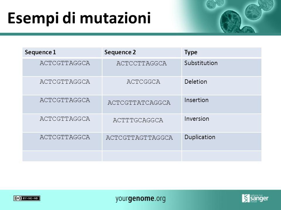 Esempi di mutazioni Sequence1Sequence 2Type ACTCGTTAGGCA Substitution ACTCGTTAGGCAACTCGGCA Deletion ACTCGTTAGGCA ACTCGTTATCAGGCA Insertion ACTCGTTAGGC