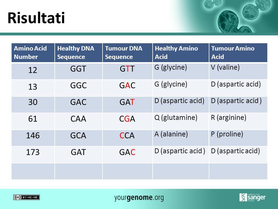 Risultati Amino Acid Number Healthy DNA Sequence Tumour DNA Sequence Healthy Amino Acid Tumour Amino Acid 12 GGTGTT G (glycine)V (valine) 13 GGCGAC G