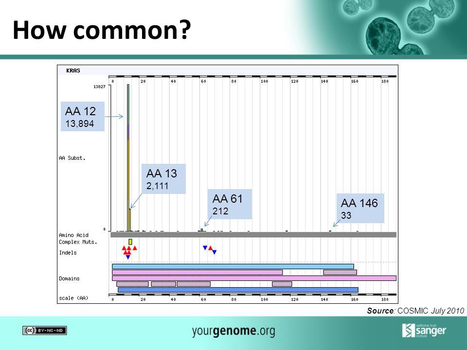 How common? AA 12 13,894 AA 13 2,111 AA 61 212 AA 146 33 Source: COSMIC July 2010