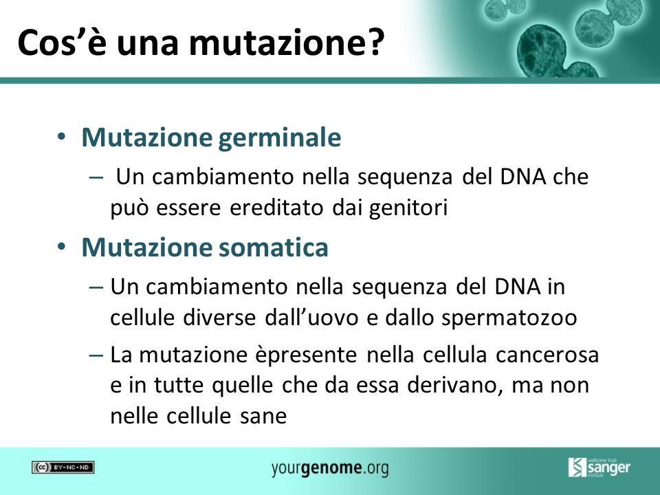 Cosè una mutazione? Mutazione germinale – Un cambiamento nella sequenza del DNA che può essere ereditato dai genitori Mutazione somatica – Un cambiame