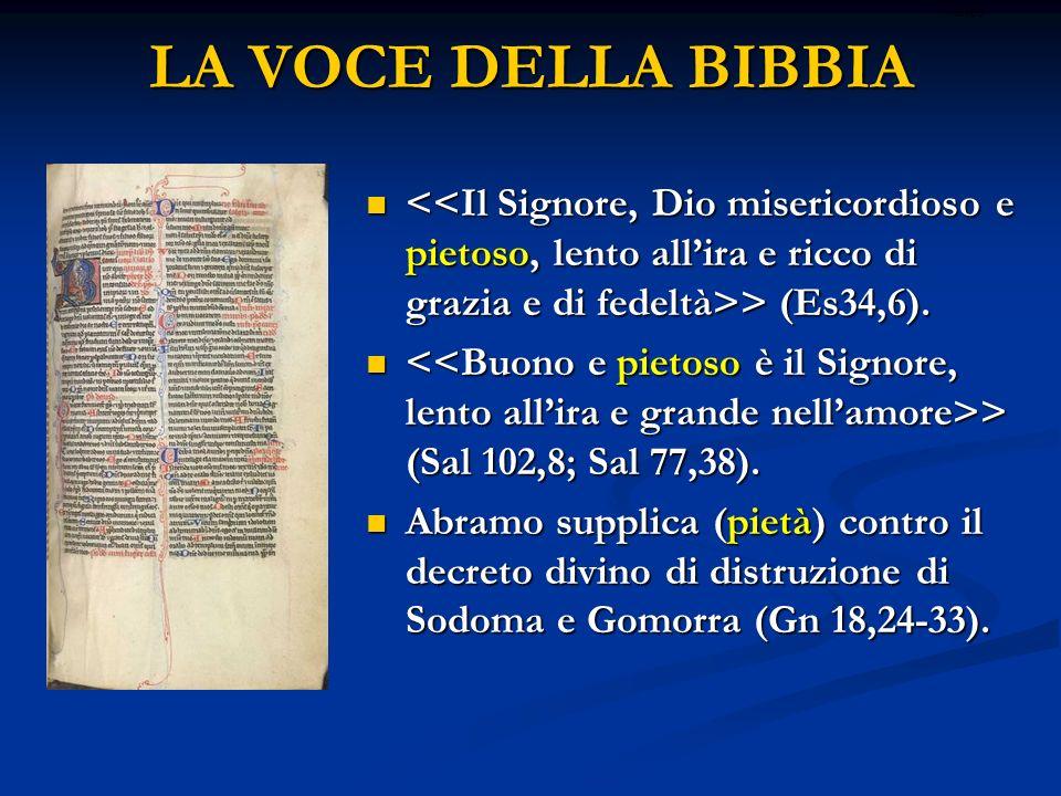 LA VOCE DELLA BIBBIA > (Es34,6). > (Es34,6). > (Sal 102,8; Sal 77,38). > (Sal 102,8; Sal 77,38). Abramo supplica (pietà) contro il decreto divino di d