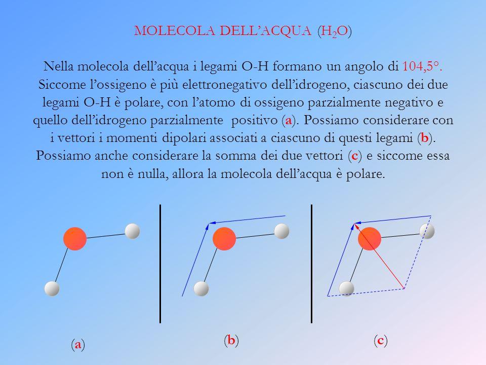 MOLECOLA DELLACQUA (H 2 O) Nella molecola dellacqua i legami O-H formano un angolo di 104,5°. Siccome lossigeno è più elettronegativo dellidrogeno, ci