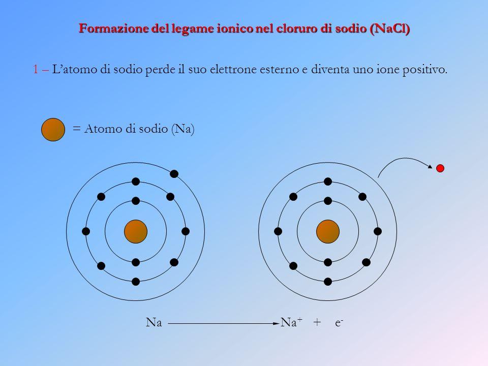 Formazione del legame ionico nel cloruro di sodio (NaCl) 1 – Latomo di sodio perde il suo elettrone esterno e diventa uno ione positivo. Na Na + + e -