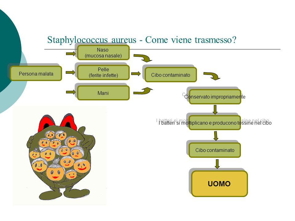 UOMO Conservato impropriamente I batteri si moltiplicano e producono tossine nel cibo Persona malata Cibo contaminato Naso (mucosa nasale) Naso (mucos