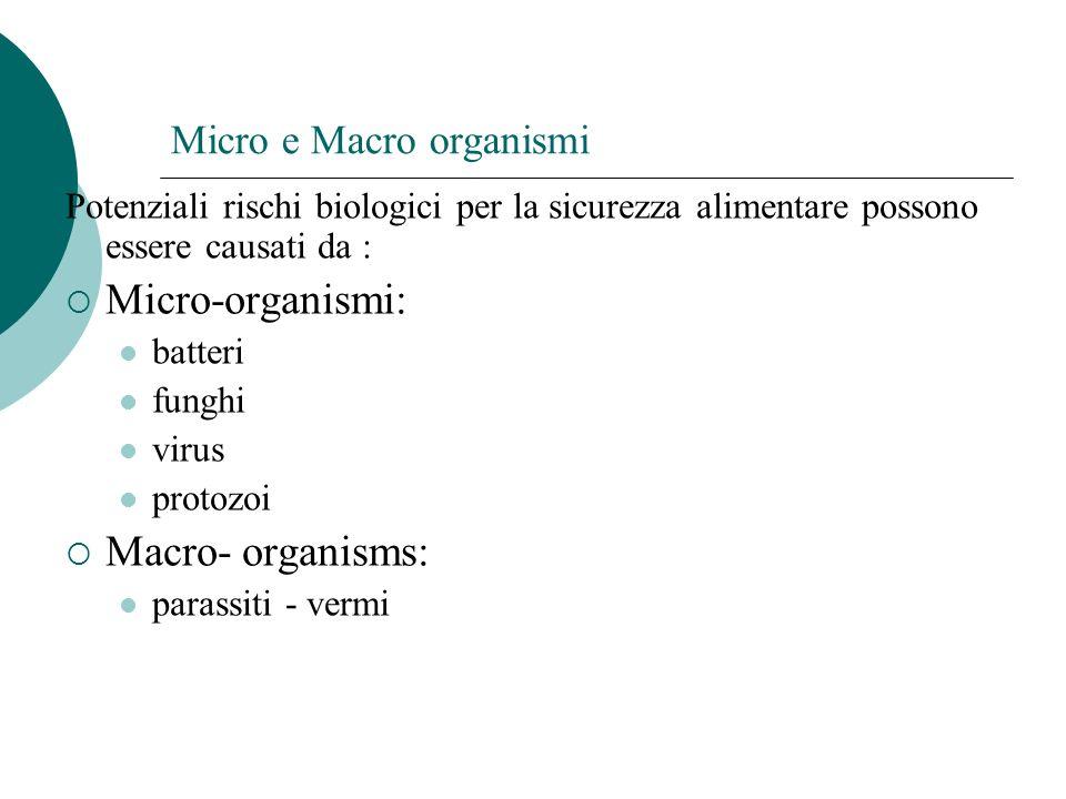 Micro e Macro organismi Potenziali rischi biologici per la sicurezza alimentare possono essere causati da : Micro-organismi: batteri funghi virus prot