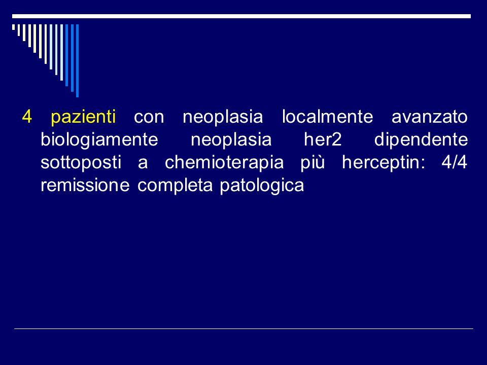 4 pazienti con neoplasia localmente avanzato biologiamente neoplasia her2 dipendente sottoposti a chemioterapia più herceptin: 4/4 remissione completa