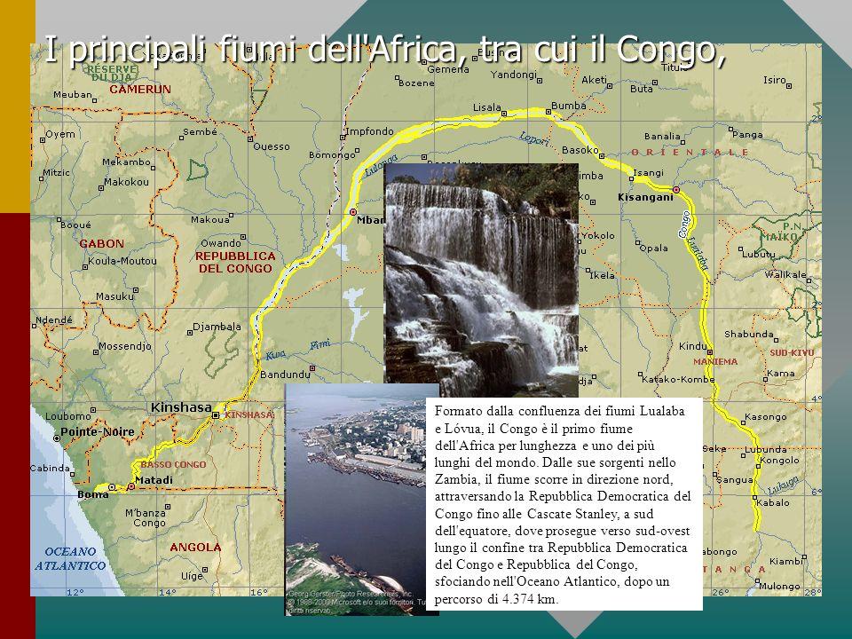 I principali fiumi dell'Africa, tra cui il Congo, Formato dalla confluenza dei fiumi Lualaba e Lóvua, il Congo è il primo fiume dell'Africa per lunghe